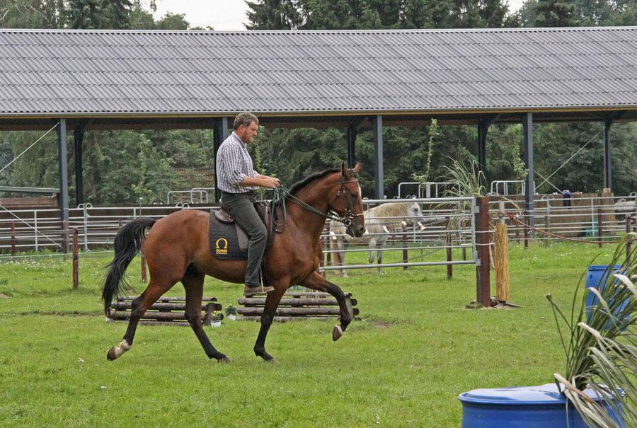 Wir waren auf der Pferd und Jagd!!